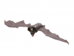 Dekoration Halloween Halloween Fledermaus, animiert 90cm